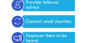 Small Non-Profits Alliance Why small non-profits?