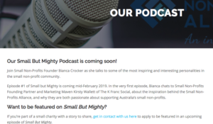 Small But Mighty charity podcast Small Non-Profits Alliance