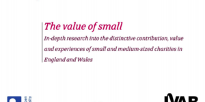 Lloyds Bank Foundation small charities report small non-profits alliance