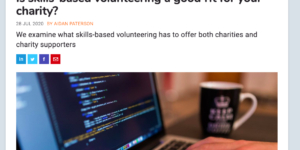 skills-based volunteering for small charities